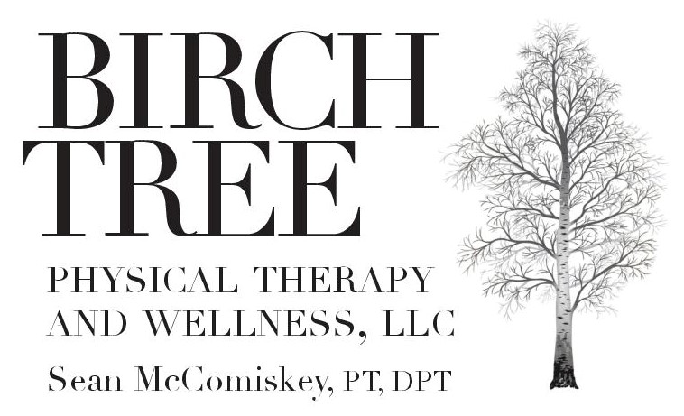 Birch Tree Physical Therapy Logo